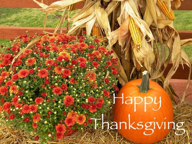 thanksgiving-482977_640